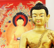 bouddha www